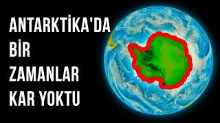 Antarktika Bir Zamanlar Tropikal ve Yeşildi