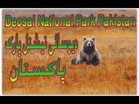 دیوسائی نیشنل پارک پاکستان / Deosai National Park Pakistan