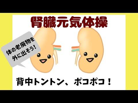 腎臓を元気にする体操 整骨院 大阪 奈良 東京練馬