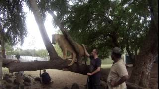 Radik & Karyn - Honeymoon in Mauritius - 2015 (GoPro Hero 3)