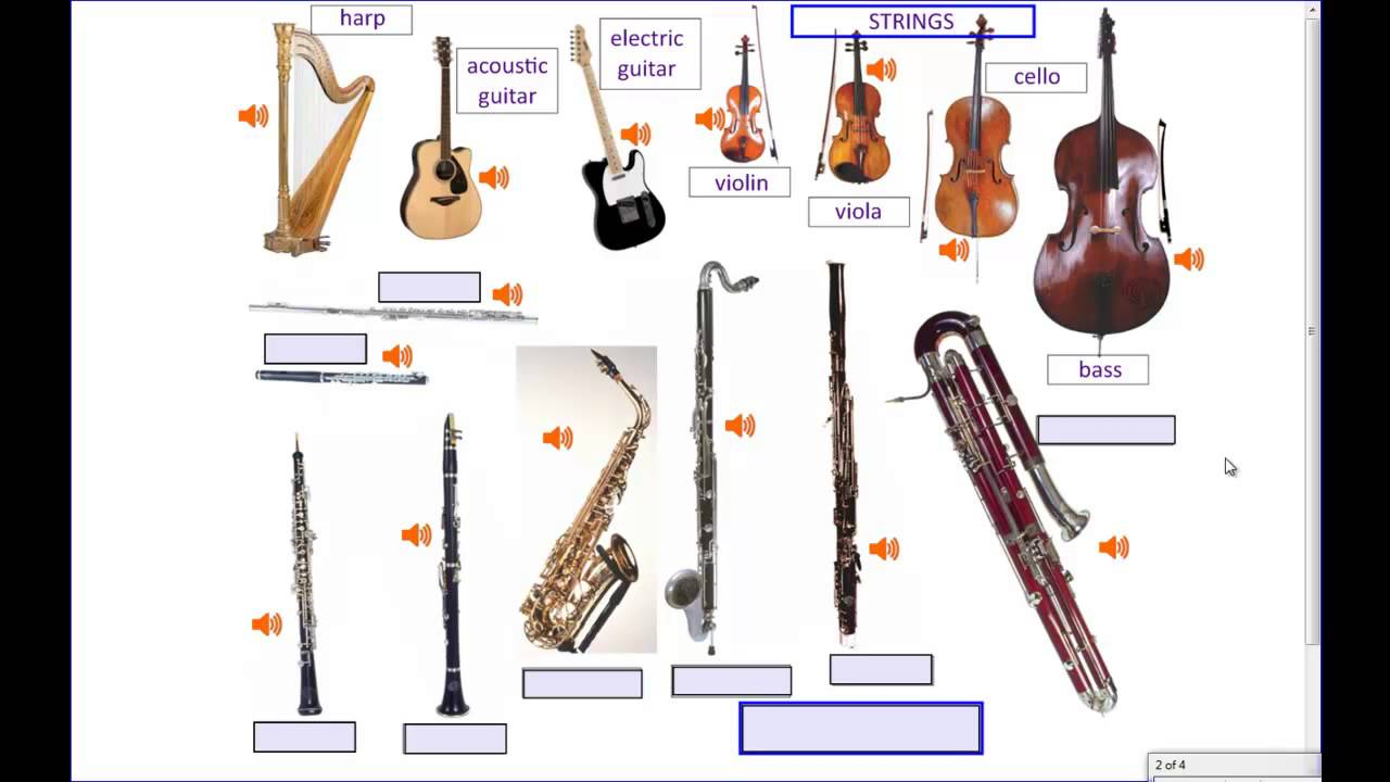Musical Instruments Part 1 Of 2 Youtube