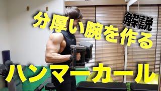 【上腕筋】ハンマーカール の やり方 と 注意点 を紹介!腕の厚みと形を作る【筋トレ】