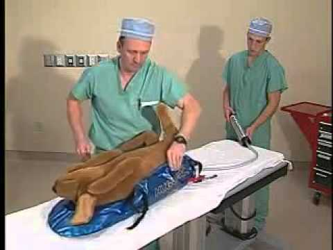 Hug U Vac Veterinary Positioning System Youtube