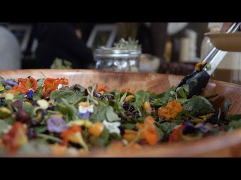 Cafe Ohlone Uses Native Food to Promote Indigenous Continuity