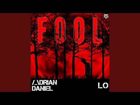 Fool (Dan's Kitchen Remix)