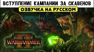 Вступление кампании за скавенов Total War WARHAMMER II бонусное видео за ритуал