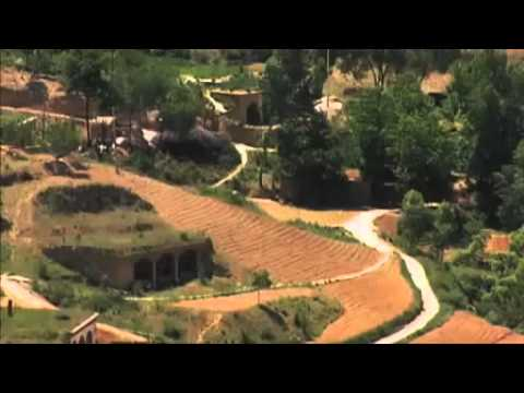 Rehabilitate Large-Scale Damaged Ecosystems - Green Gold Documentary