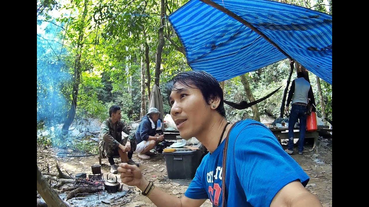 เดินป่า ตั้งแคมป์ ท่องไพร ฟังเสียงธรรมชาติ จากผืนป่าแพรกตะคร้อ Trekking find nature in the Forest