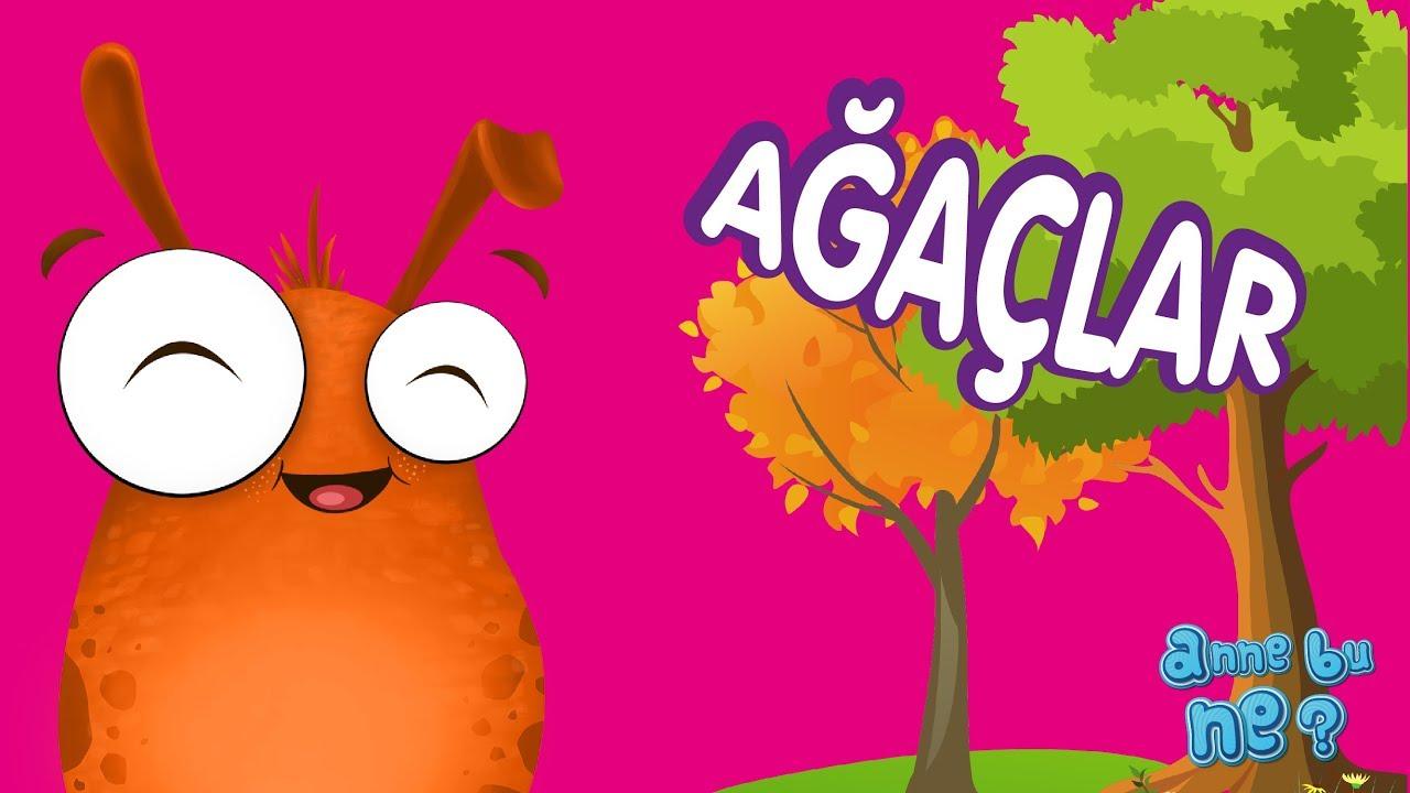 Iyi Ki Varsın Ağaç Okul öncesi Eğitici Animasyon Anne Bu Ne