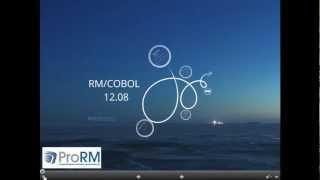 RM/COBOL 12.08