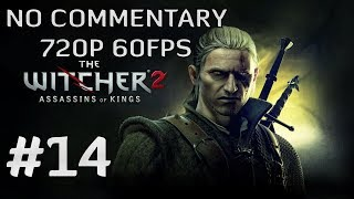 The Witcher 2: Assassins of Kings Enhanced Edition #14