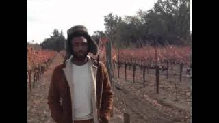 Childish Gambino - What Kind Of Love [FREE DOWNLOAD]