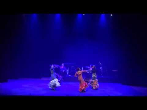 Sunny-Jung Flamenco Dance Company - Fandango