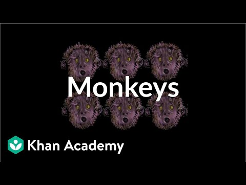 Monkeys For A Party | Place Value (tens And Hundreds) | Early Math | Khan Academy