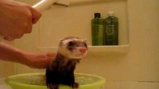 お誕生日前なので綺麗にしましょう♪シャワーは平気です。