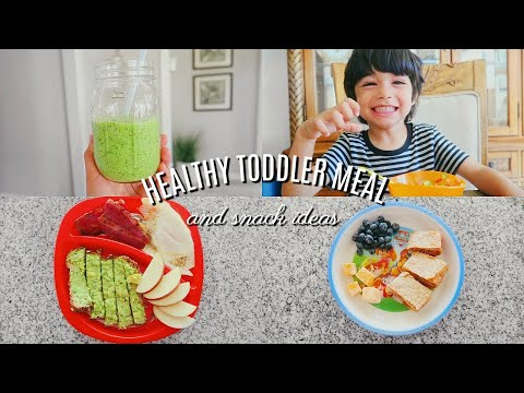 HEALTHY TODDLER MEAL & SNACK IDEAS 2020