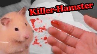 Hamster beißt brutal zu!