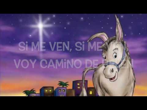 Mi Burrito Sabanero Lyrics/Letras