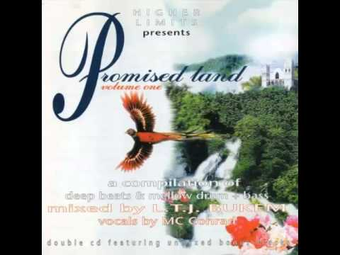 LTJ Bukem & MC Conrad - Promised Land Vol.1