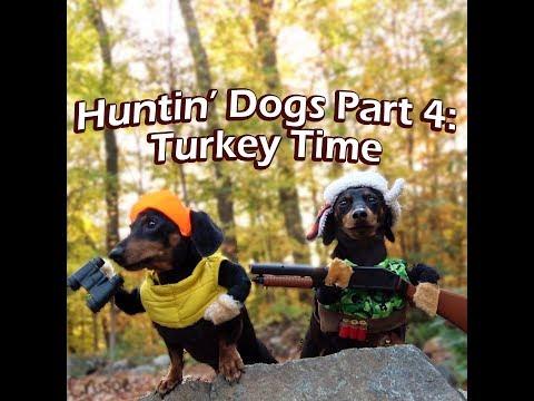 Crusoe & Oakley the Huntin' Dogs: Turkey Time