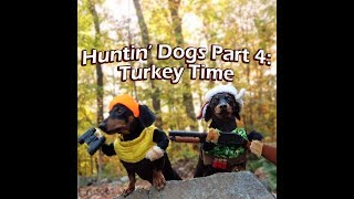 crusoe oakley the huntin dogs turkey time