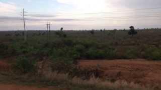 Malamulele Town