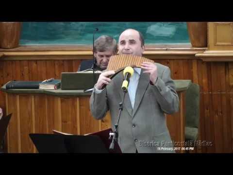 Viorel Manolache - Copil hoinar