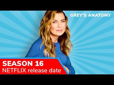 Grey S Anatomy Season 16 Fall 2019 Premiere Date Netflix Release