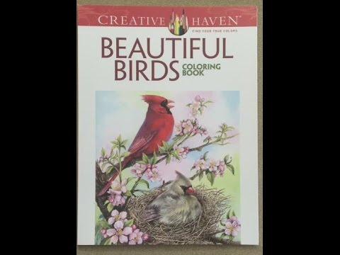 Creative Haven Beautiful Birds Coloring Book Flip Through