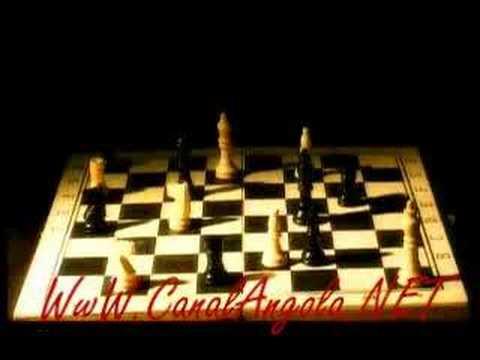 Raul Negro -