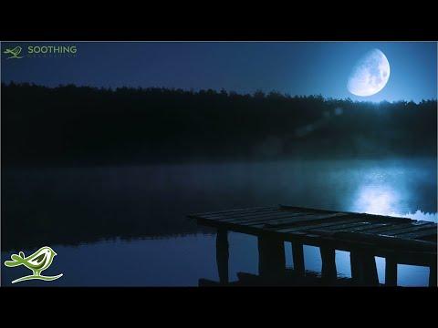 Relaxing Sleep Music 24/7: Sweet Dreams, Fall...
