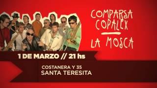 1 DE MARZO - LA MOSCA Y COMPARSA COPALEX (CARNAVAL SANTA TERESITA)