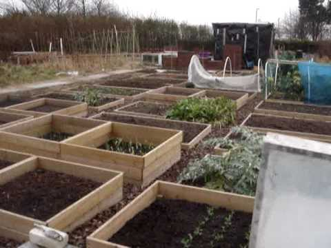 Raised bed allotment February 2007