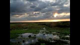 Paynes Prairie Sunset Time Lapse - Gainesville, Fl.