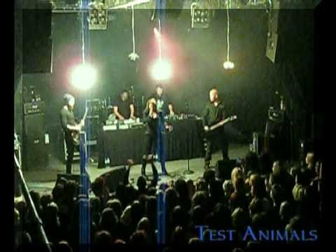 Velcra - Test Animals