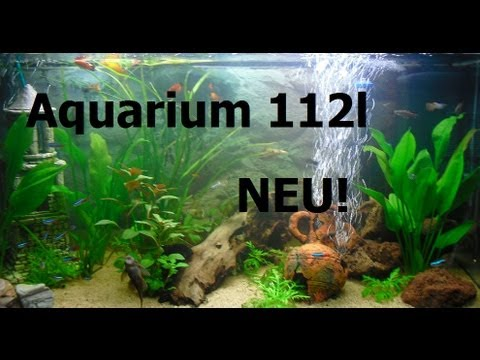 my fish 112 liter aquarium fische nach neu gestaltung youtube. Black Bedroom Furniture Sets. Home Design Ideas