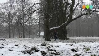 Eerste sneeuw sinds 2019, beelden van de Dellen/></a> </div> <div class=