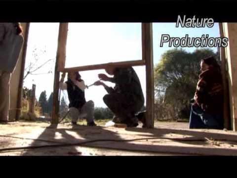 Casas ecologicas diferentes formas de construccion en for Construccion casas