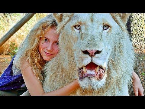 Mia Und Der Weisse Löwe Netflix