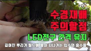 수경재배기 식물LED등 사용방법 주의사항