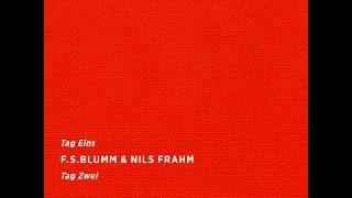 f.s. blumm & nils frahm - tag eins tag zwei / 2016 / full album