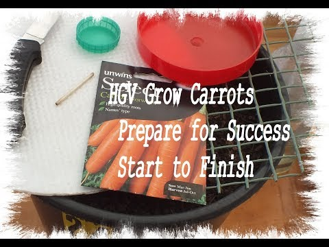 HGV Grow Carrots  Prepare for Success start to finish