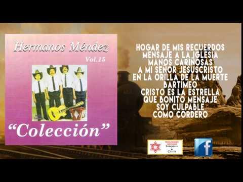 DISCO DE COLECCIÓN LOS HERMANO MENDEZ