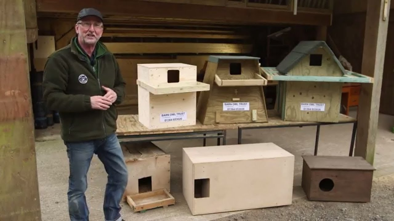 How to Choose the Best Barn Owl Nestbox Design - YouTube