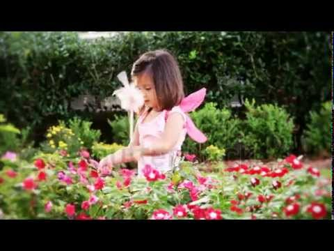 A Darling Little Girl Dressed In A Fairy Costume, Tapes On A Flowering Plant With Her Pink Wand    S