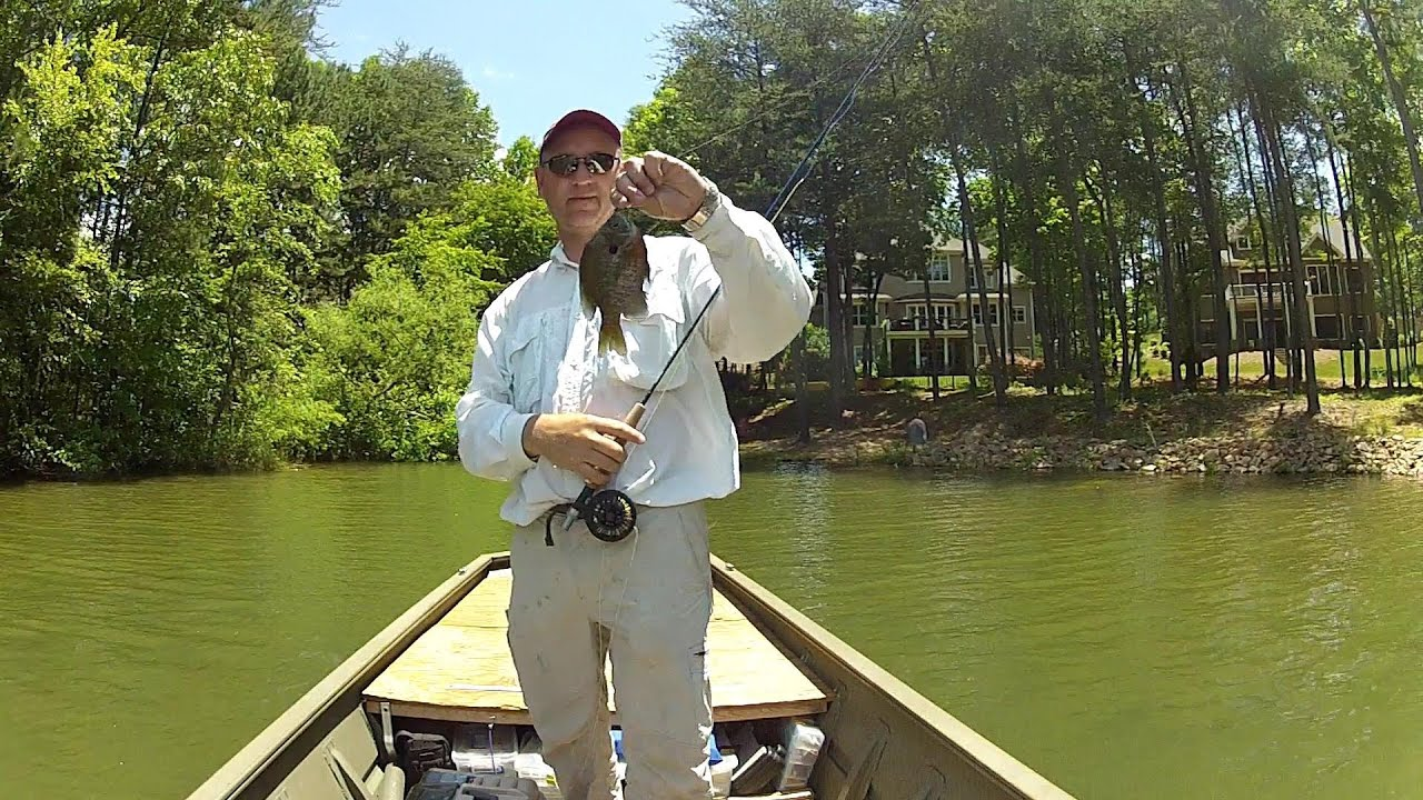 Fly fishing for bluegill lake norman 2013 youtube for Fly fishing for bluegill