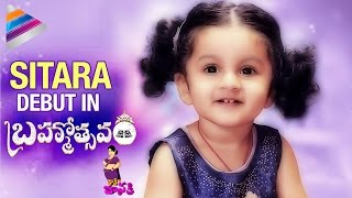 Mahesh Babu Daughter Sitara To Make Debut | Brahmotsavam Movie | Kaaki Janaki | Telugu Filmnagar