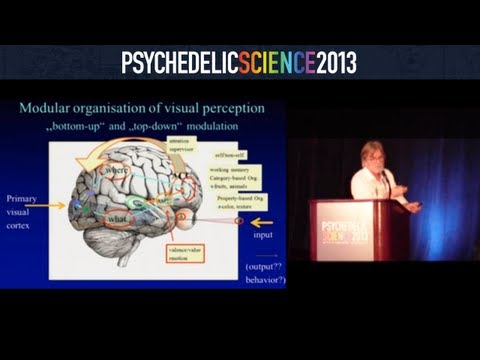 Neurobiology of Psychedelics: Implication for Mood Disorders - Franz Vollenweider