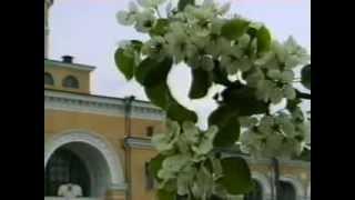 Бердичев - город жизни моей. (перед отъездом).(Бердичев весенний. Сделано моим Другом Алексеем Р. (Олекса), 2008-02-23T22:55:18.000Z)