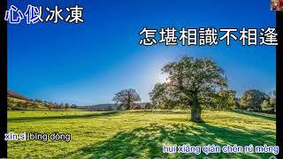 999朵玫瑰 999 Duo Mei Gui - Karaoke